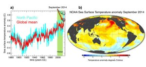 a) Global mean (red) and North Pacific mean (blue) sea surface temperature departures in NOAA dataset from 1854-2013; b) Map of September 2014 sea surface temperature  departures from long-term mean.