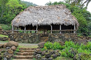 Built in accord with ancient cultural protocols, the Hale Noa (house free from kapu) at Limahuli Garden and Preserve, finished in 2013, was thatched in part with loulu, a native fan palm.