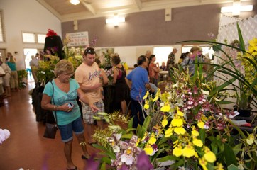 2013 Annual Spring Fantasy Orchid Show. Photo by Ryan Metzger