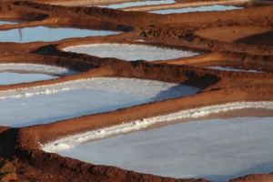 The salt beds at Hanapepe Salt Ponds are seen here. Photo by Piilani Kali