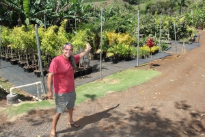 Keith Silva's nursery in Lawa'i Valley