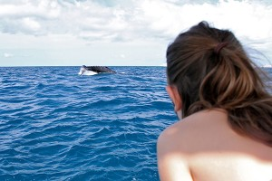 Makaya Kaduce is seen here watching a humpback whale. Courtesy of Kalasara Setaysha/Koholā Leo