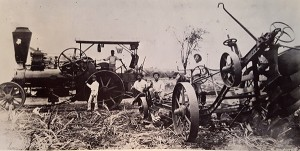 Fowler steam plows were introduced to Kōloa Plantation in 1893. Photo by Bishop Museum