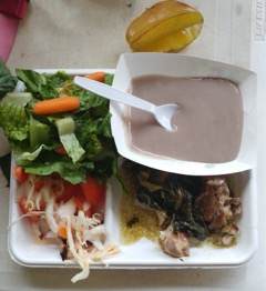 A school lunch by Chef Hoku at Ke Kula Ni`ihau_ chicken lau lau, poi, mixed green salad, onion and tomato pakalau salad, and starfruit.