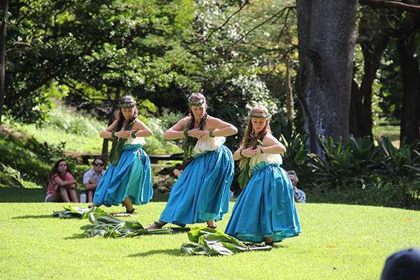 Halau Palaihiwa O Kaipuwai dancers perform at the official opening of NTBG's revamp of the Hawaiian Life Canoe Plant Garden Jan. 17.