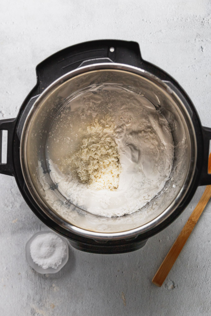 instant pot with coconut rice