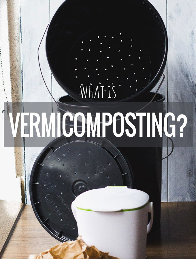 Vermicomposting: What?!