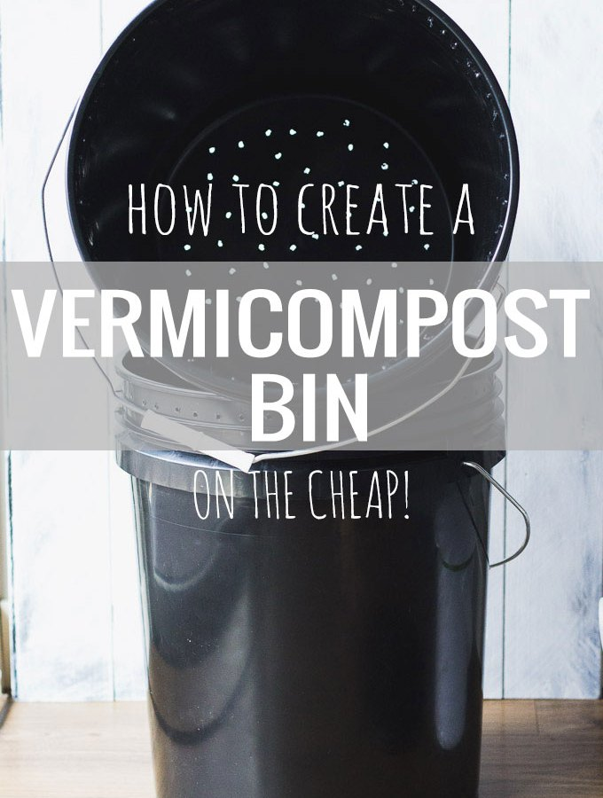 How to Create a Vermicompost Bin - on a budget!   Fork in the Kitchen
