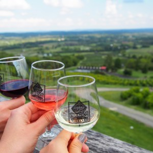 It's Okay to (Drink) White After Labor Day: Bluemont Vineyard