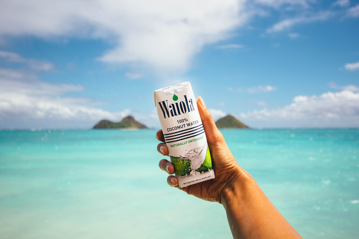 hawaii waiola coconut water pops fork to belly