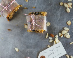 trail mix bars dog people hawaii fork to belly