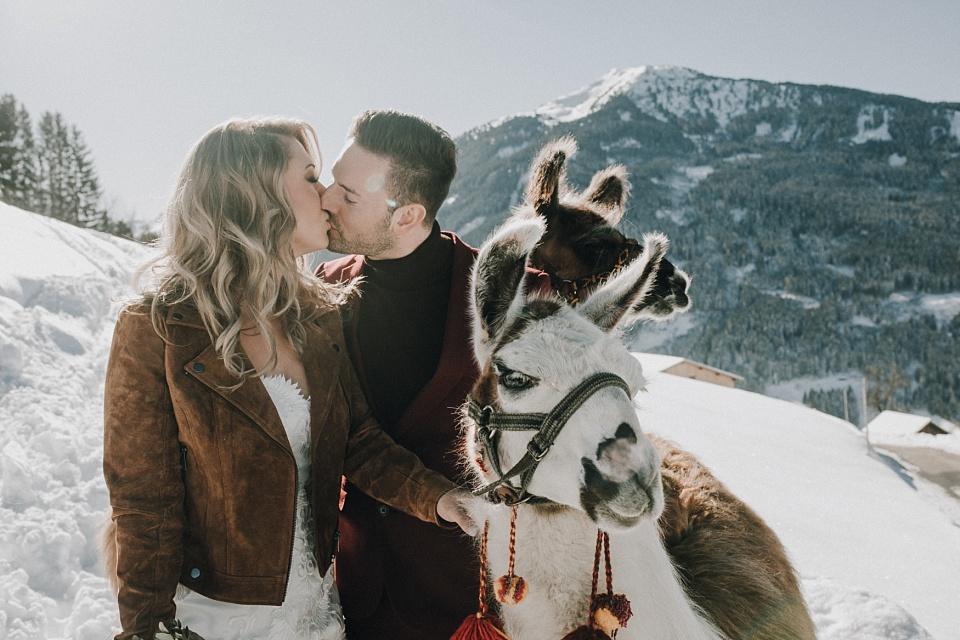 After Wedding Shooting, Zillertal, Brautpaar, Lamas