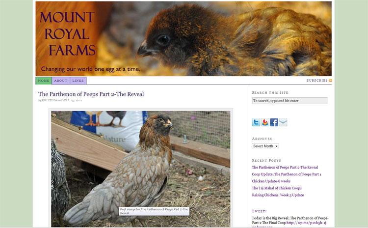 Mount Royal Farm Blog Page