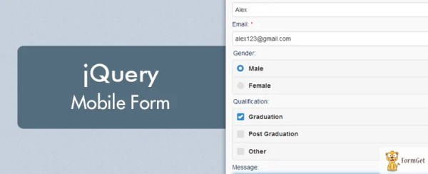 jQuery Mobile Form Example | FormGet