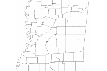 Download ePub PDF File » map mississippi cities on texas with cities, nd maps with cities, mississippi flag, map of southern mississippi cities, belize maps with cities, mississippi highway map, state of alabama with cities, map ms of mississippi cities, mississippi map clinton ms, mississippi map counties, mississippi major cities, mississippi map oxford ms, mississippi map games, us state maps with cities, mississippi counties and cities, mississippi map towns, map of florida cities, mississippi map meridian ms, mississippi city, mississippi cities and towns list,