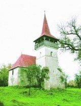 Monumentele nepasarii: Biserica din Pesteana