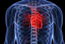 falla cardiaca - Formula Medica