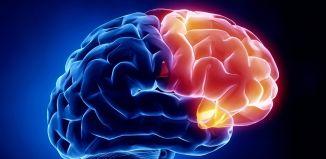 Epilepsia - Formula Medica