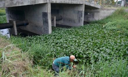 Desazolvan drenajes, alcantarillas, rejillas y zanjas