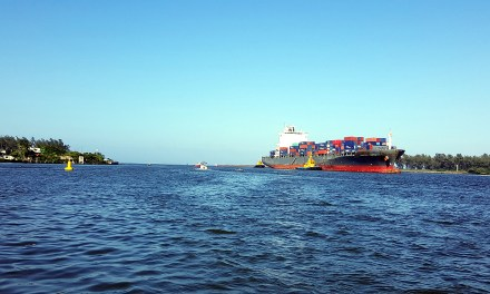 Con la llegada del Hammonia Venetia, Tuxpan Port Terminal inicia operaciones