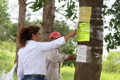 campaña de descontaminación visual (5)