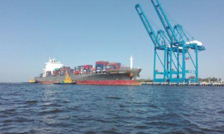 Supervisan embarcaciones para evitar llegada de virus del Mayaro