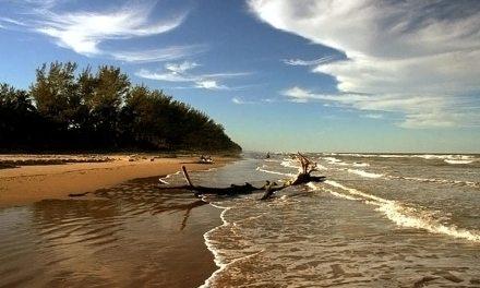 Banderazo a limpieza de playas