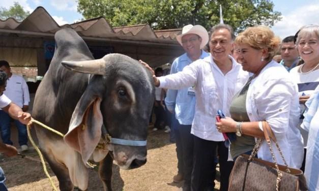 Inaugura el Gobernador la Expo Feria San Juan 2018, de Martínez de la Torre