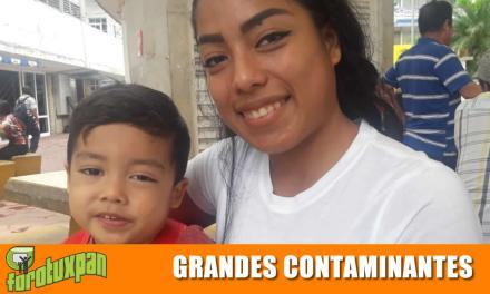 TOALLAS SANITARIAS Y PAÑALES SON GRANDES CONTAMINANTES