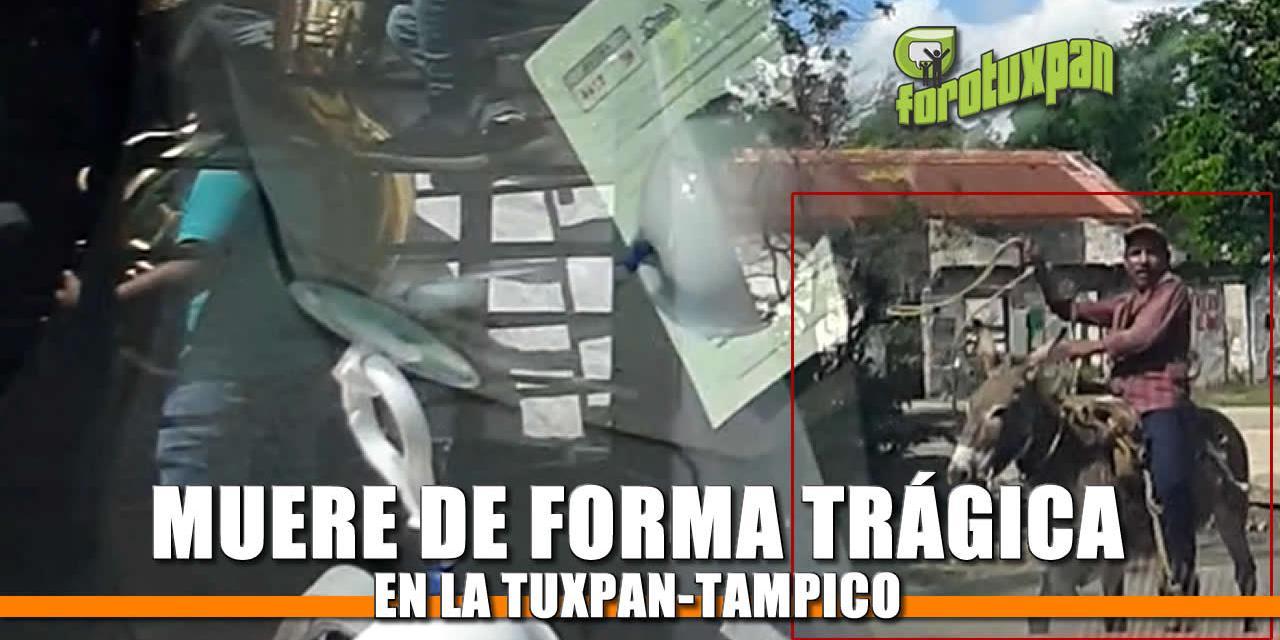 Muere de forma trágica en la Tuxpan-Tampico