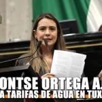 Pide Montserrat Ortega ajustes para tarifas de agua en Tuxpan