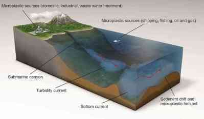 Mikroplastik-Rekord am Meeresboden vor Korsika entdeckt