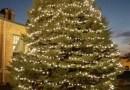 32nd Annual Holiday Memorial Tree Lighting Sunday, Nov. 19