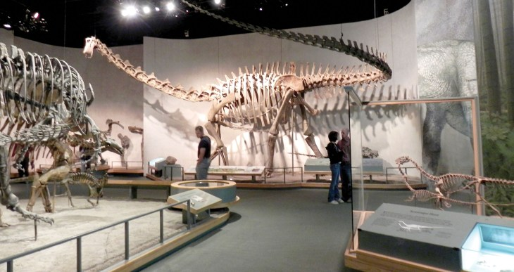 Denver Museum of Nature and Science: Blue Star Museum – Fort ...
