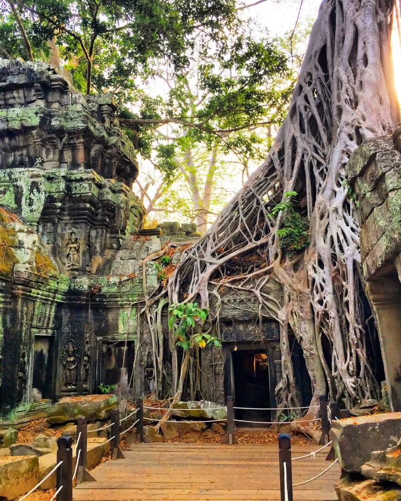 cambodia-angkorwat-temple-forteebello