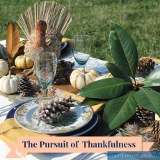 The Pursuit of Thankfulness