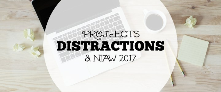 Basking In Projects – NIAW 2017