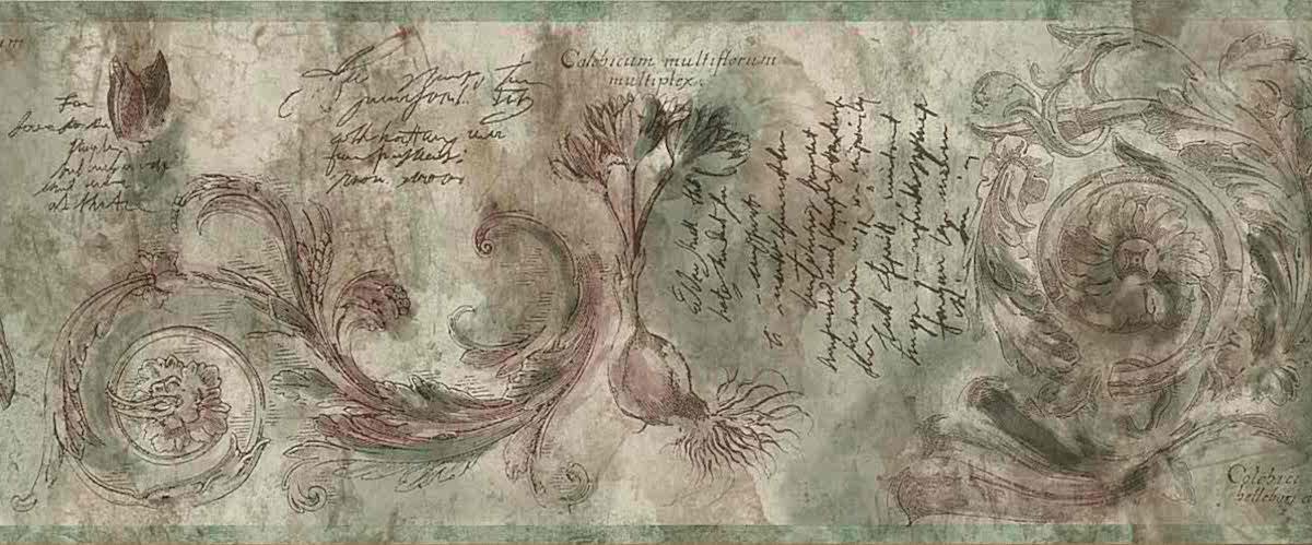 bulbs script wallpaper border, green, brown, faux finish, garden, botanical, sun room, scroll