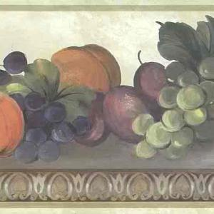 Egg Dart Kitchen Vintage Border Fruit 750-8112 FREE Ship