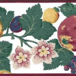 Multicolor Fruit Floral Vintage Wallpaper Border Kitchen 17832b FREE Ship