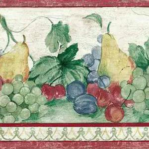 Grapes Fruit Vintage Wallpaper Border Kitchen KT5233B FREE Ship