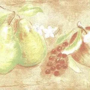 Peach Fruit Vintage Wallpaper Border Green Kitchen TE9241-B FREE Ship