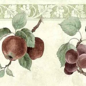 Plums Pears Vintage Wallpaper Border Fruit Kitchen 22556 FREE Ship