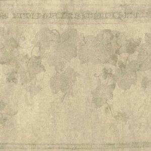 Taupe Glazed Wallpaper Border Ivy Leaves TP9074B FREE Ship