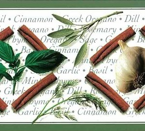Herbs Vintage Wallpaper Border Kitchen Green RL1006B FREE Ship