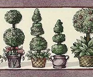 Topiaries Vintage Wallpaper Border Green Kitchen Floral SV2173B FREE Ship
