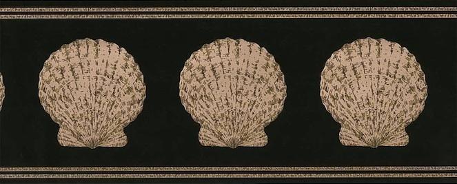 Vintage seashells wallpaper border in Dark Green & Taupe