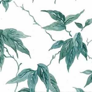 Leaves Vintage Wallpaper Green Vines White Kitchen TM2063 D/Rs