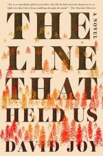 Rapid Reviews – The Line That Held Us, I'll Be Gone in the Dark, Awakened