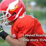 Level 1 Article